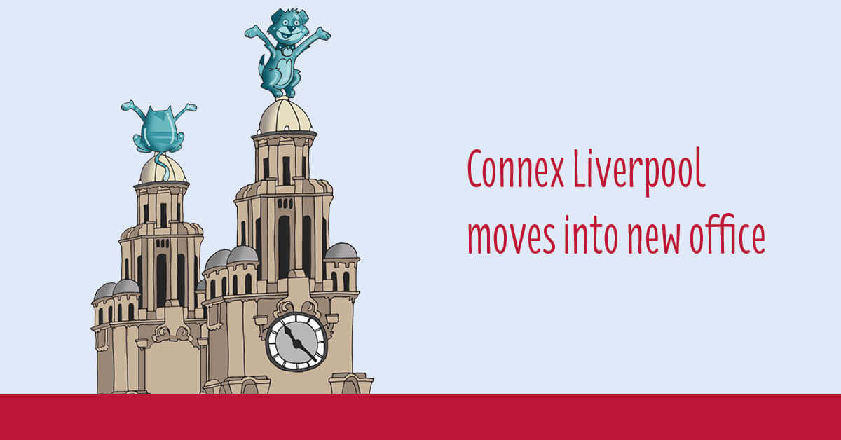 Connex Liverpool Moves Into New Office Connex Education